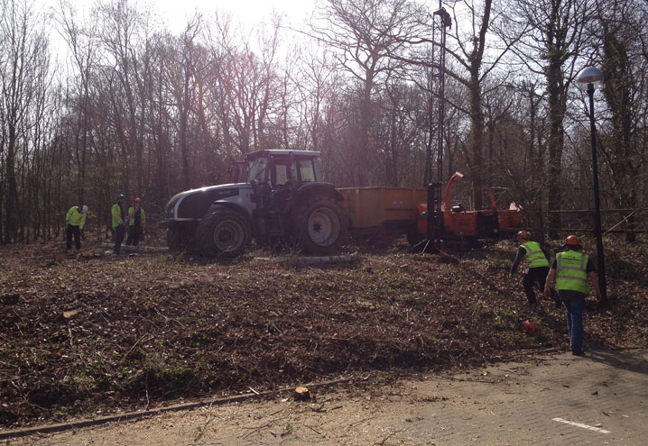 stump grinding Northants Oxfordshire